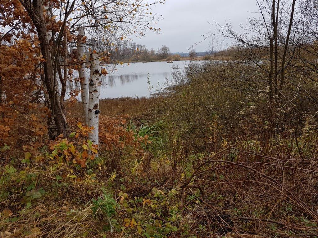 Herbstlandschaften - Schellbruch